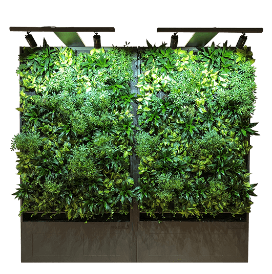 sagegreenlife-flourish-living-wall-overwatch-product-design-chicago-clip